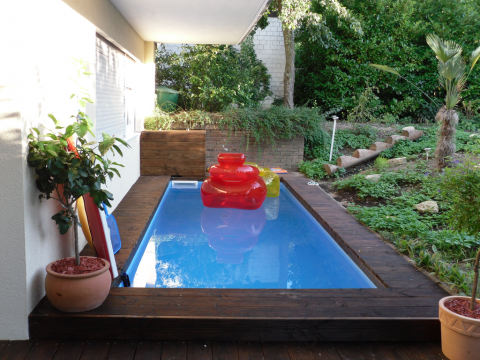 Interesting Pool Designs that Boost the Aspect of Your Garden Picture